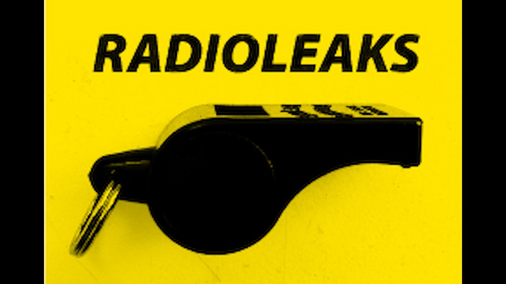 Logotyp Radioleaks