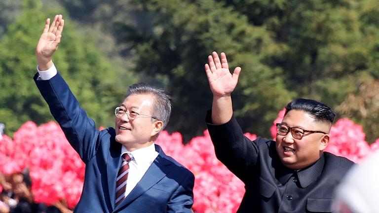 Sydkoreas Moon Jae-in och Nordkoreas Kim Jong-un