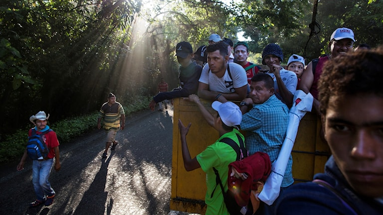 Migrant karavan USA