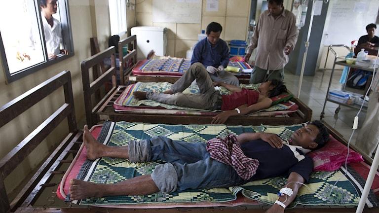 Malariasjuka patienter på ett sjukhus i Kambodja. Foto: David Longstreath/Scanpix.