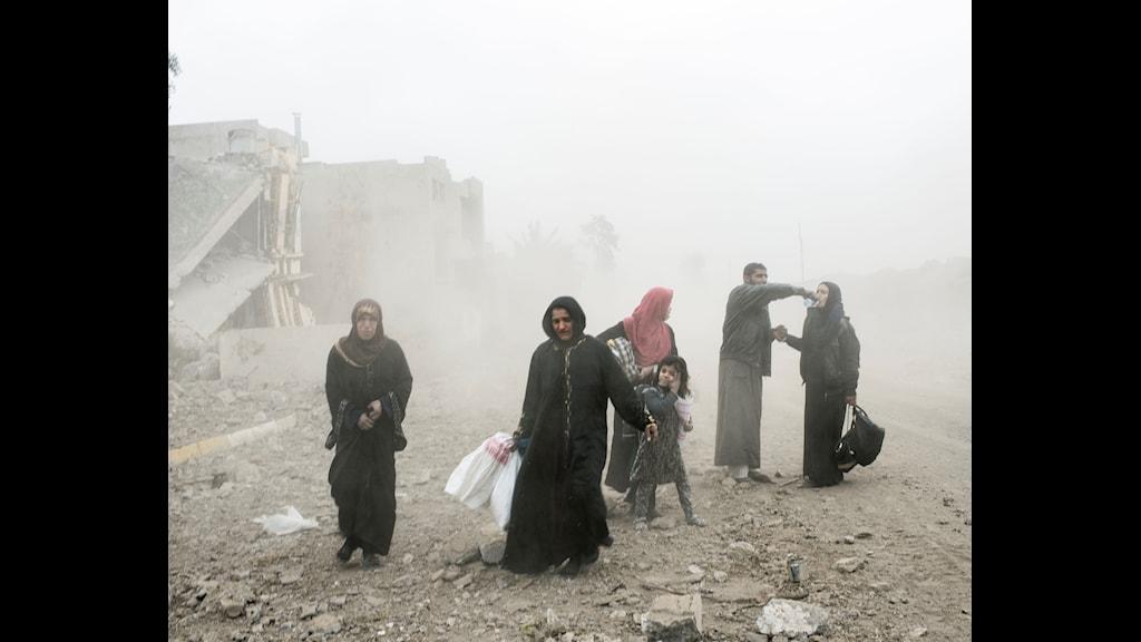 Civila flyr Mosul tidigare i år.