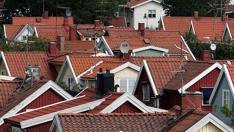 Hus på rad i Ängby i Stockholm. Foto: Fredrik Sandberg/Scanpix.