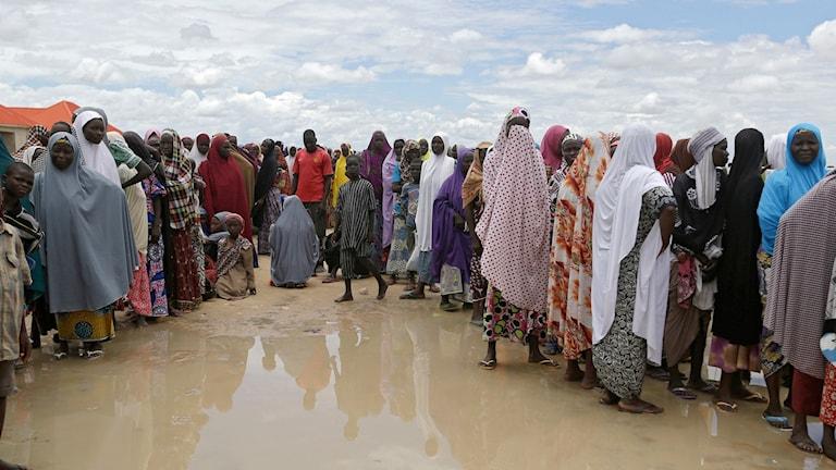 Kvinnor och barn i ett flyktingläger i Nigeria.