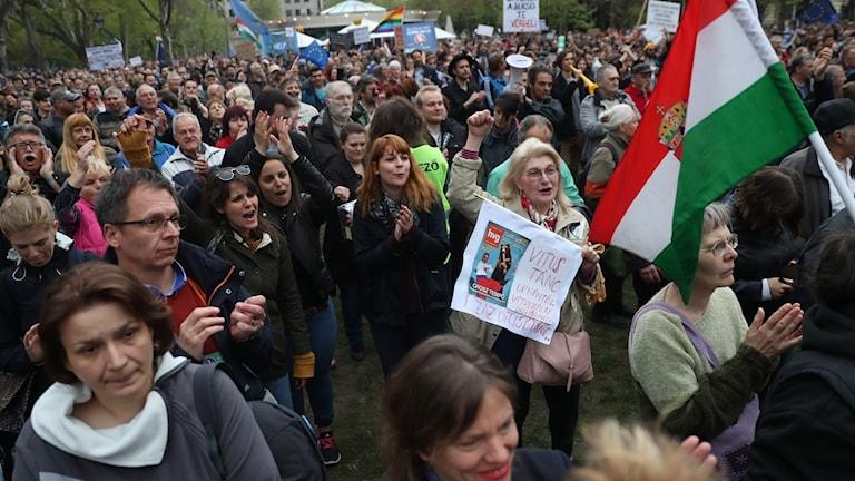 Demonstrationer i Budapest mot regeringens lagförslag.