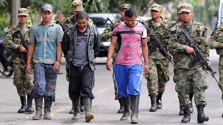 Tre misstänkta medlemmar ur Farc-gerillan escorteras av colombians militär sedan de överlämnat sig till armén. Foto: Luis Benavides/Scanpix.