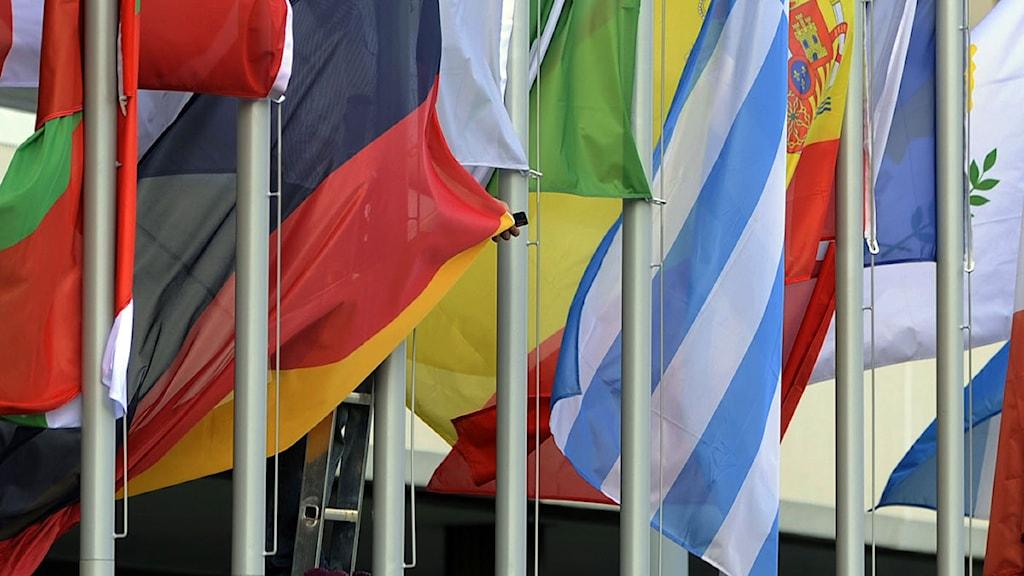 EU-medlemmarnas flaggor.