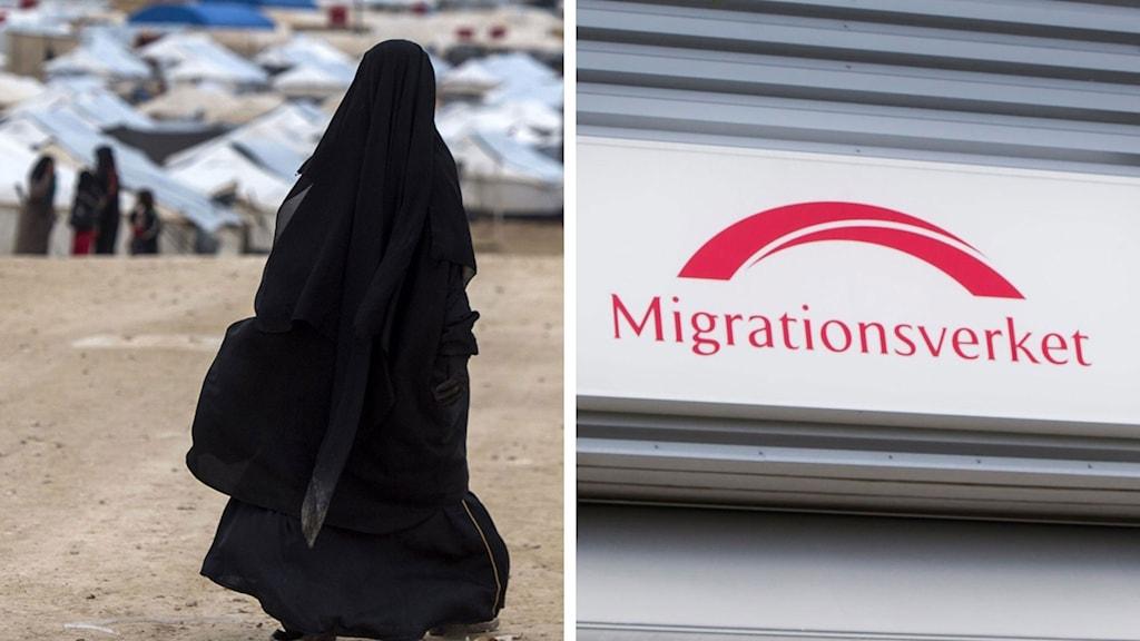 Split Migrationsverket Flyktingläger Syrien