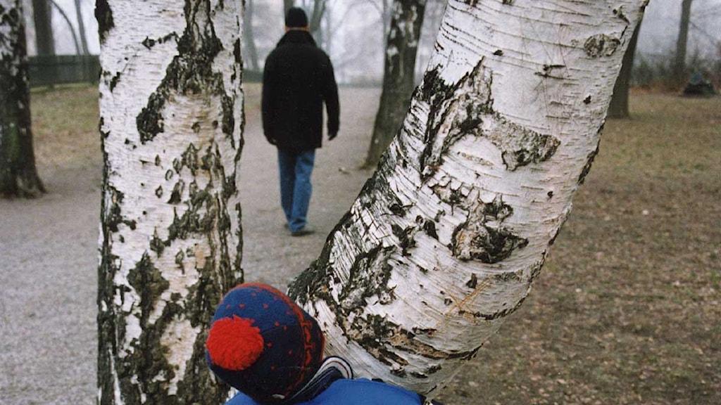 En pojke kikar fram mellan två grenar och tittar efter sin pappa som går iväg. Foto: Ingvar Karmhed/Scanpix.
