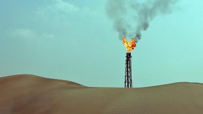 Flammor från en anläggning för utvinning av naturgas i öknen 4 mil norr om Qatars huuvudstad Doha. Foto: Karim Sahib/Scanpix.