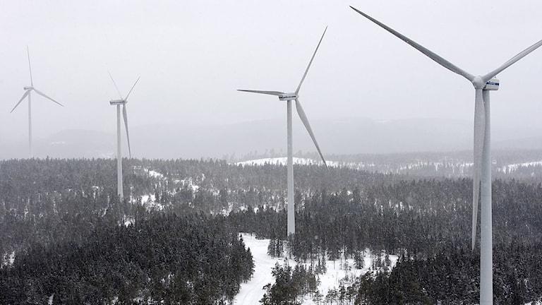 Vindkraftverk utanför Ludvika som byggts av Stena Renewable. Foto: Trons/Scanpix