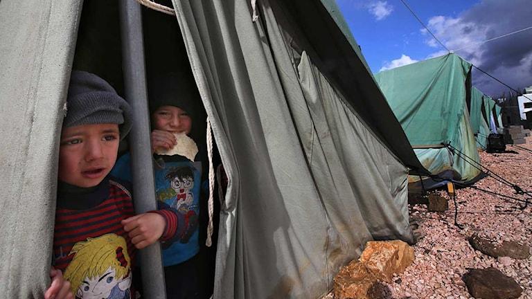 Två små pojkar tittar ut ur ett tält i ett flyktingläger.