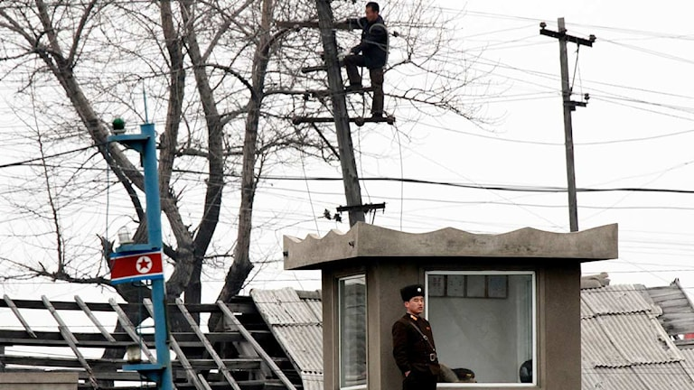 En nordkoreansk man arbetar med en kraftledningsstolpe. Foto: AP Photo/Scanpix