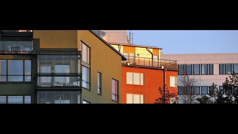 Tre hus med lägenheter i olika färger i solnedgången. Foto: Hasse Holmberg/Scanpix.