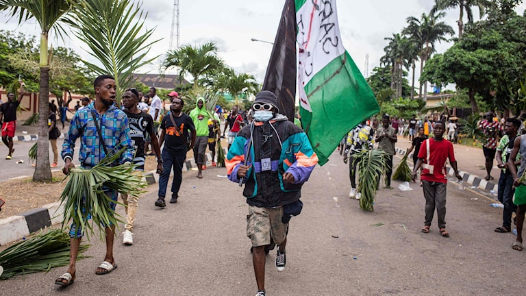 demonstranter med nigerianska flaggor