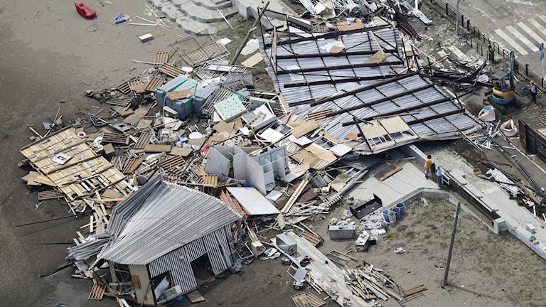 Stor förstörelse i Tokyo efter tyfonen Faxais framfart.