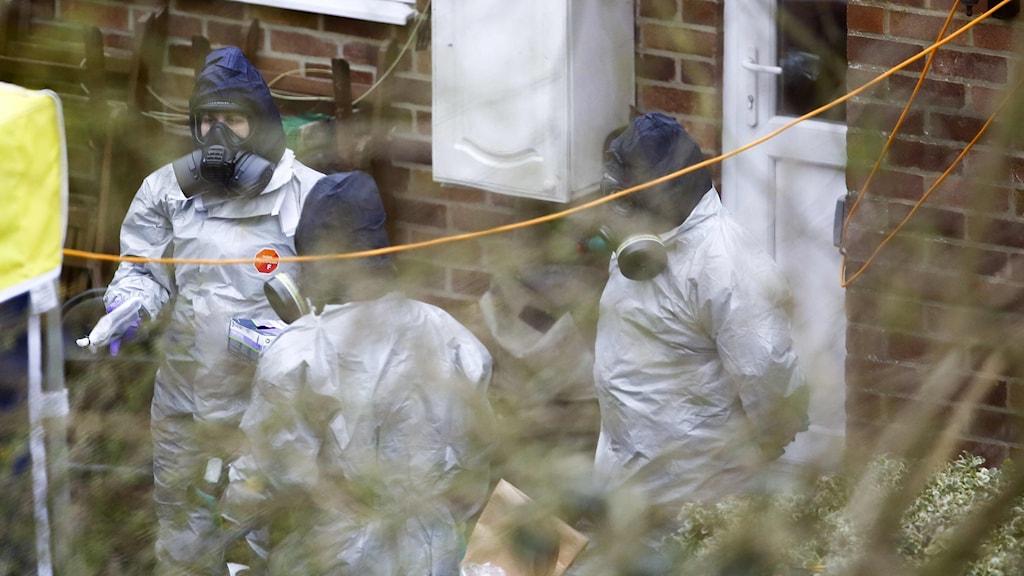 Utredare arbetar i trädgården till Sergei Skripals hus i Salisbury.