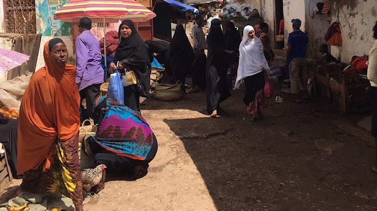 Livet i Lamu i KEnya är tungt och fattigt berättar bybor för Ekots utsända.