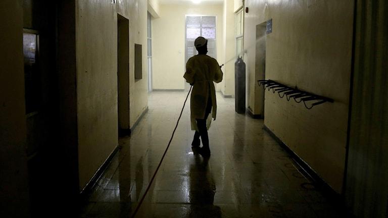 Arbetare spejar desinfektionsmedel på ett sjukhus.
