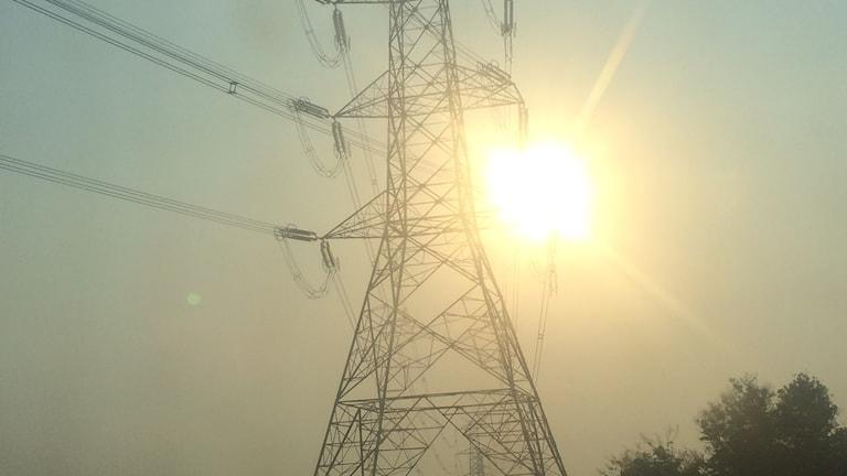 Kraftledning från Kamuthi solkraftspark i södra Indien