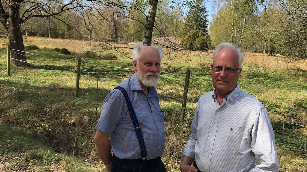 Torsten Werner och Per Eckersten är oroliga för naturreservatet Jällabjär. Foto: Petra Haupt/Sveriges Radio