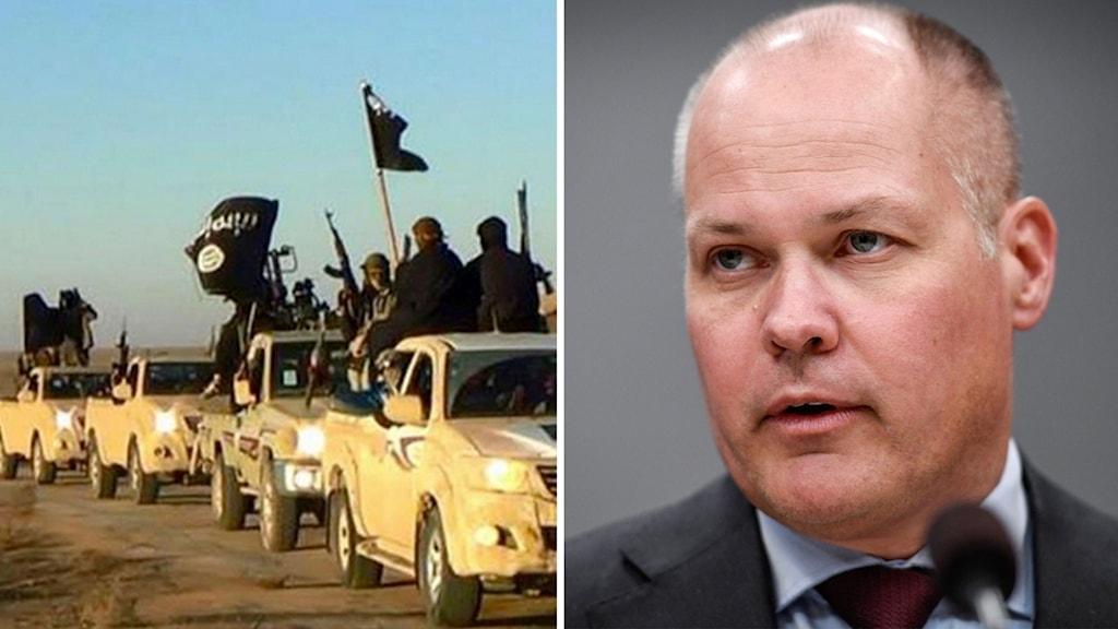 Arkivbild på IS-krigare och bild på justitie- och migrationsminister Morgan Johansson.