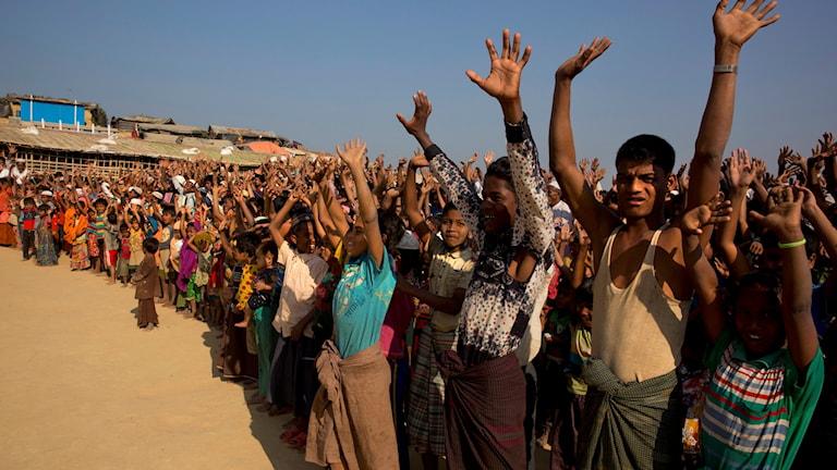 Rohingyer visar sitt missnöje med ett beslut om att återförande till Myanmar från Bangladesh tidigare i år.