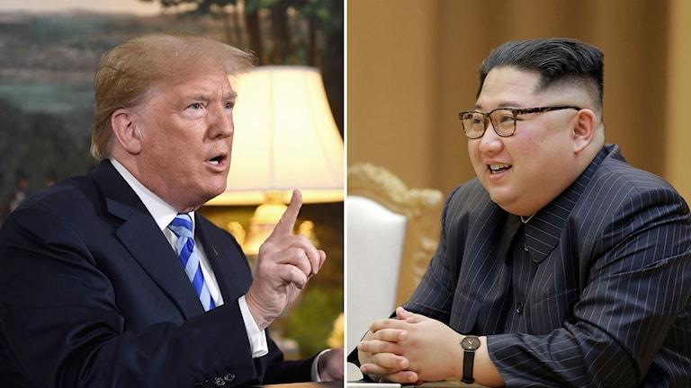 Trump och Kim ska mötas i Singapore.