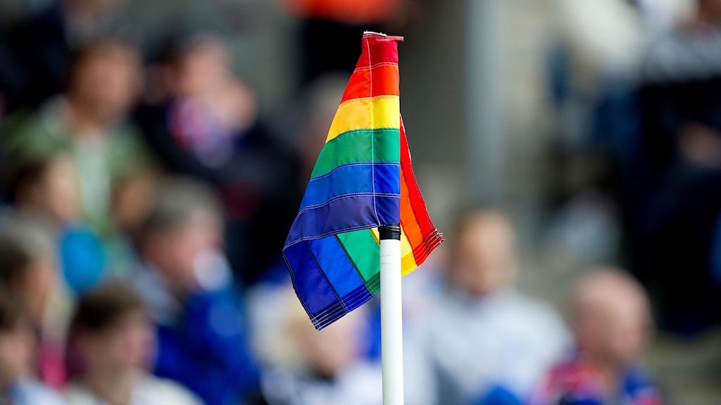 Regnbågsflagga, RFSL, hbtq