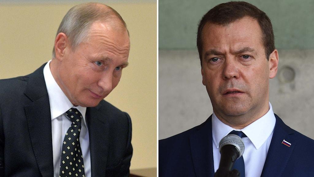 Delad bild: Vladimir Putin och Dmitrij Medvedev.