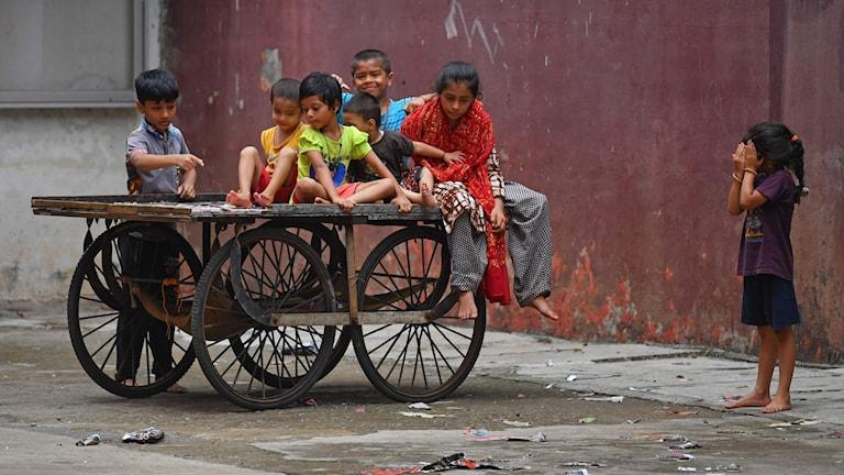 Barn som sitter på vagn.