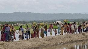 Bilden visar rohingyer som flytt från Burma och som tillåts vandra in i Bangladesh. De går längs med vattensamlingar, med sin packning och barn vid handen. Foto: Dar Yasin/TT.