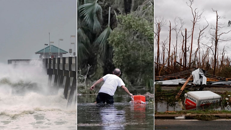 orkan, michael, florida, usa