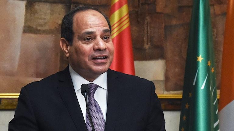President Abdel al-Fattah al-Sisi.