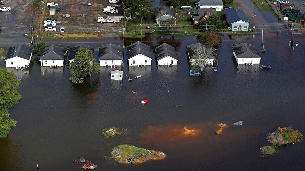 Orkaner som Florence, som orsakade enorma översvämningar i South Carolina i höstas, kommer att bli flera varnar rapportförfattarna.