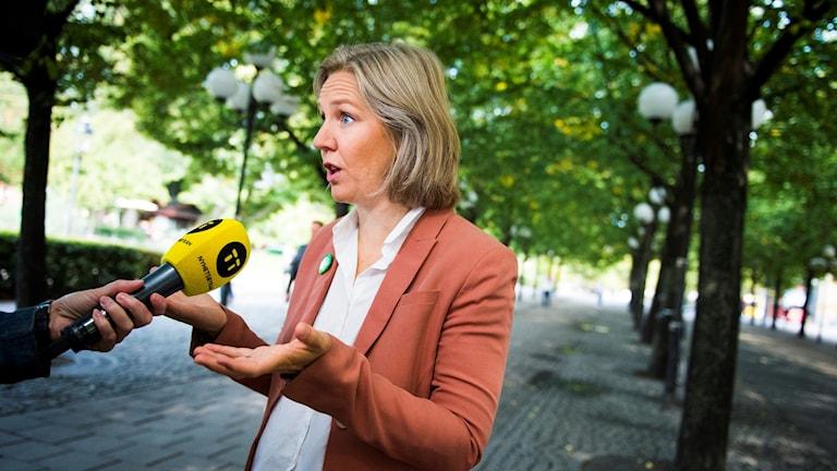 Karolina Skog MP