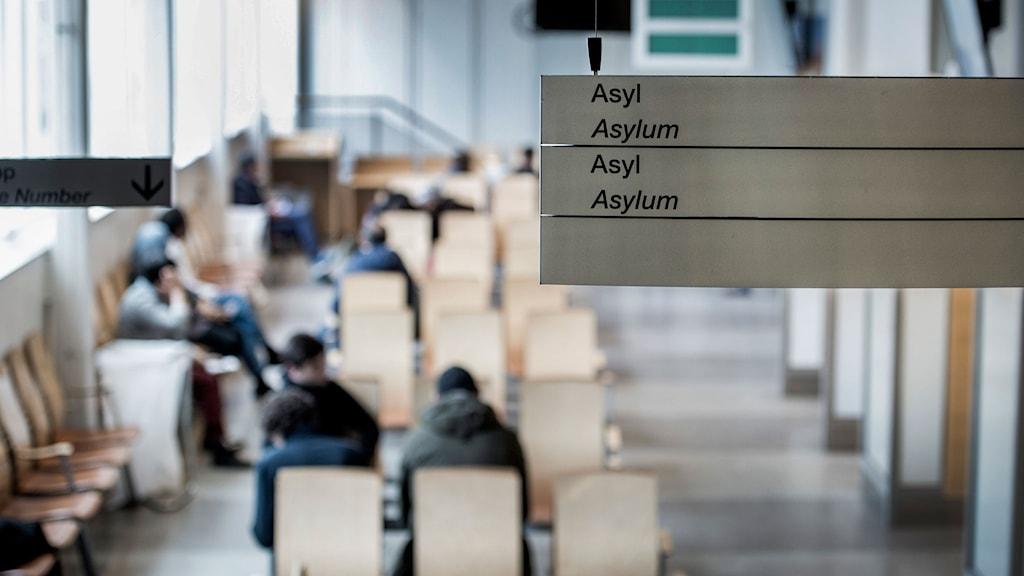 Väntsal för asylsökande på Migrationsverket.