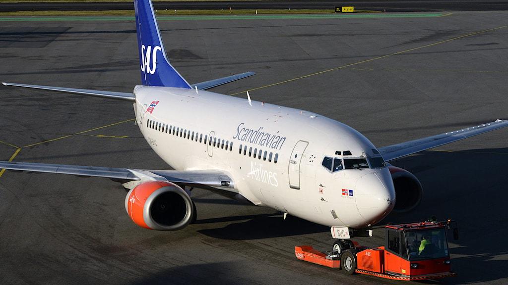 Många SAS-flygningar till och från Arlanda ställs in under måndagen. Foto: Johan Nilsson/TT