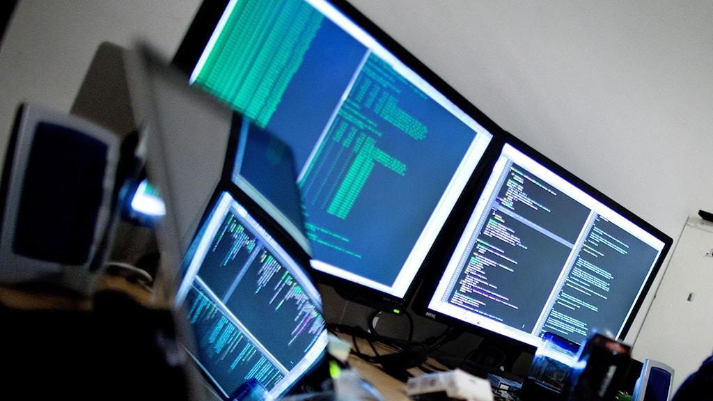 Dataskärmar med kod. Foto: Thomas Winje Øijord/TT.
