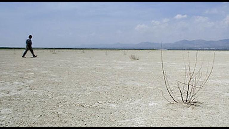 Torka i Spanien. Foto: Fernando Bustamante/Scanpix.
