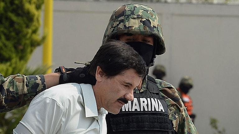 En av världens mest eftersökta brottslingar, Joaquin Guzman, greps under lördagen i Mexiko. Foto: Alfredo Estrella/AFP/TT