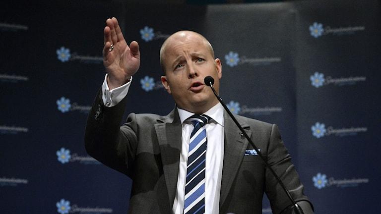 Sverigedemokraternas partisekreterare Björn Söder. Foto: Janerik Henriksson /TT sz772d95