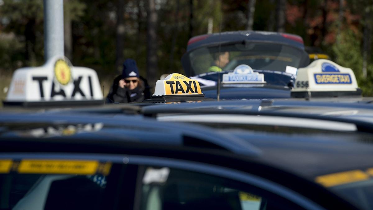 Taxibilar. Foto: Pontus Lundahl / TT