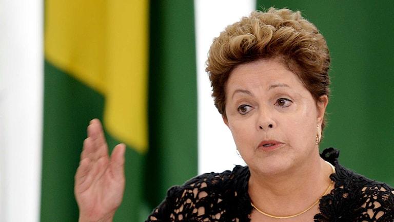 Brasiliens president Dilma Rousseff. Foto: Evaristo Sa / TT