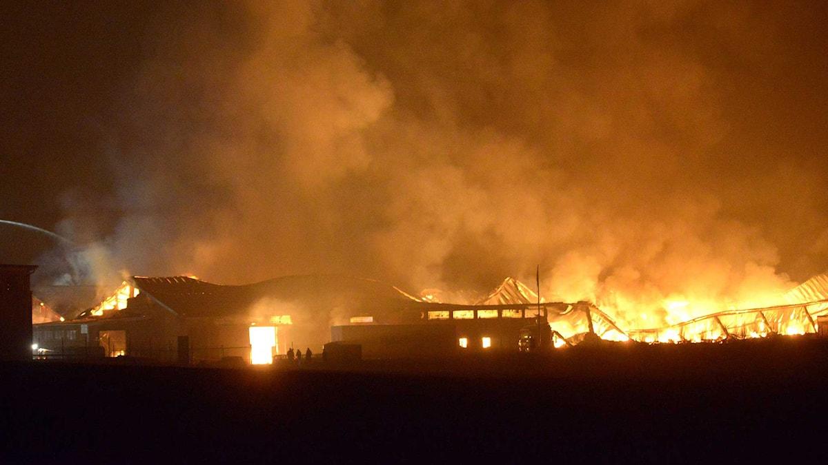 Brand i en industrifastighet. Foto: Johan Nilsson/TT.