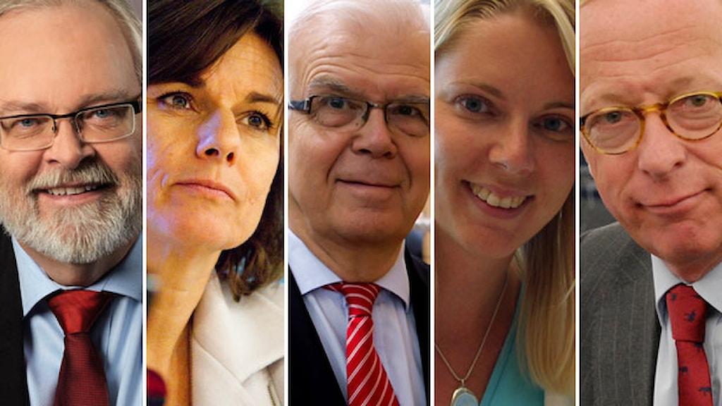 Göran Färm, foto: Socialdemokraterna. Isabella Lövin, foto: Fredrik Hjerling. Alf Svensson, foto: Martin Lahousse. Åsa Westlund, foto: Peter Berggren/Imagine. Gunnar Hökmark, foto: EU-parlamentet.