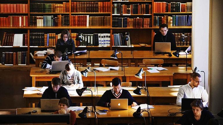 Studenter i en studiesal. Foto: Tor Johnsson / TT