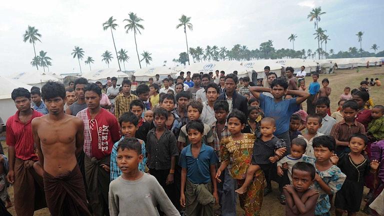 Fördrivna rohingyas i ett flyktingläger i Burma. Foto: Soe Than Win/TT.