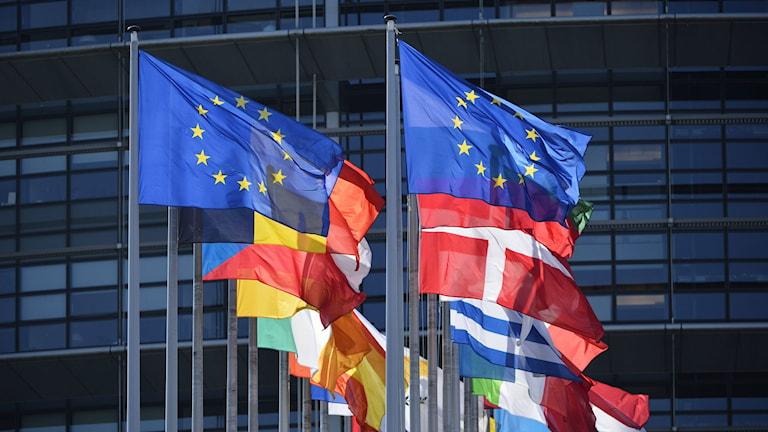 EU flaggor.