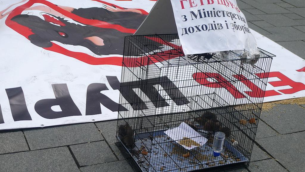 Ukraina, demonstration, parlament, korruption