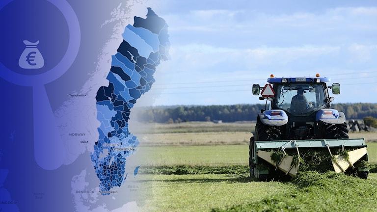38 miljarder kronor till svenskt jordbruk.